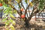 6047 Peppertree Lane - Photo 21