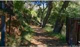 4380 Palmer Canyon - Photo 13