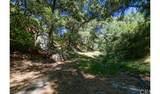 4380 Palmer Canyon - Photo 15