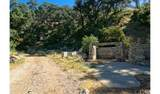 4380 Palmer Canyon - Photo 17