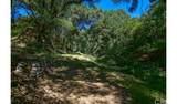 4380 Palmer Canyon - Photo 21