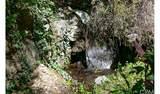 4380 Palmer Canyon - Photo 4