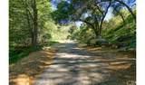4380 Palmer Canyon - Photo 31