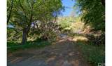 4380 Palmer Canyon - Photo 33