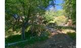 4380 Palmer Canyon - Photo 35