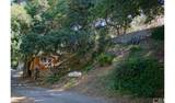 4380 Palmer Canyon - Photo 5