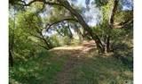 4380 Palmer Canyon - Photo 41