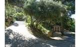4380 Palmer Canyon - Photo 6