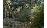 4380 Palmer Canyon - Photo 10