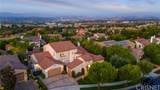 26644 Oak Terrace Place - Photo 49