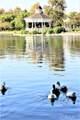 28758 Lake Drive - Photo 40