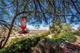 58971 Carmelita Circle - Photo 12