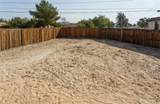 20456 Skyline Ranch Circle - Photo 24