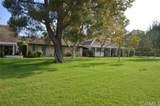 28456 Buena Vista - Photo 9
