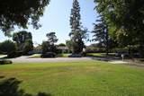 1129 Paloma Drive - Photo 9