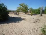 3453 Mesquite Springs Road - Photo 17