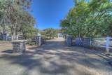 39890 Stirrup Road - Photo 4