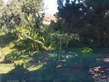 5372 Punta Alta - Photo 12