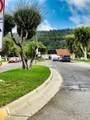 13018 Via Del Sol Avenue - Photo 16