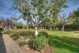49530 Rancho Las Mariposas - Photo 24