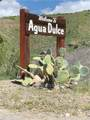 0 Agua Dulce Land - Photo 2