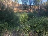10028 Creek View Drive - Photo 2