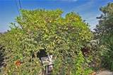 4541 Bedilion Street - Photo 33