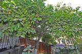 4541 Bedilion Street - Photo 40