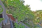 4541 Bedilion Street - Photo 41