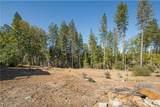 11221 Pine Summit Drive - Photo 3