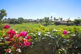 79115 Rancho La Quinta Drive - Photo 11