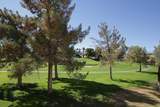 505 Desert Falls Drive - Photo 23