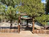 33793 Cedar Pines Lane - Photo 3
