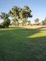 556 Desert W Drive - Photo 30