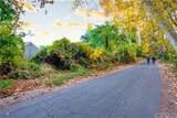 1662 Park Vista Drive - Photo 9