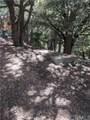 60 San Antonio Falls - Photo 21