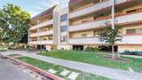 2444 Del Mar Boulevard - Photo 3