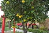 16845 San Jose Street - Photo 35