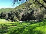53700 Pine Canyon Road - Photo 31