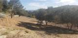4091 Paseo De Olivos - Photo 19