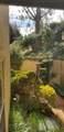 5650 Roundtree Place - Photo 26