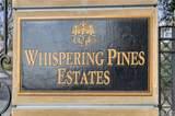 387 Torrey Pines Drive - Photo 42