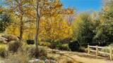 101 Blackberry Creek - Photo 37