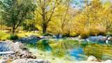 101 Blackberry Creek - Photo 40