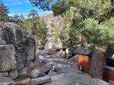 69 Big Bear Trail - Photo 6