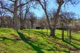 0-160 AC Cotton Creek Road - Photo 8