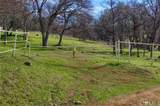 0-160 AC Cotton Creek Road - Photo 9