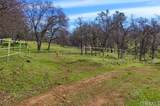 0-160 AC Cotton Creek Road - Photo 10