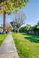 6049 Arroyo Road - Photo 40