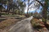 49433 Road 420 - Photo 29